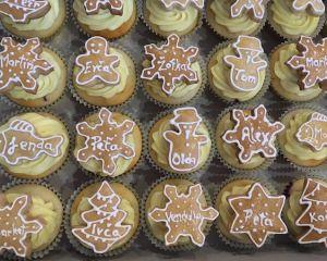 Cupcakes_s_vanilkov_m_kr_mem_a_pern_kem