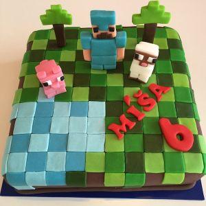 Dort Minecraft a figurky