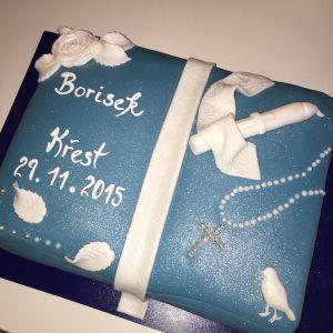 Dort ke křtinám chlapečka - kniha modrá
