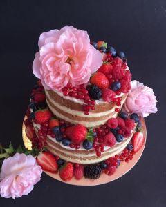 Naked_cake_s_r_emi
